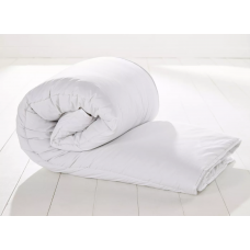 Single Duvets (disinfected)