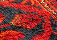 Delicate Carpet